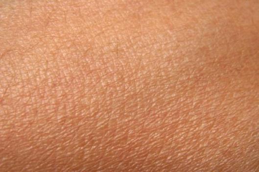 Boobs! Da Google har algoritmer for å beregne prosentandel hud i et bilde, går jeg for hundre prosent. Koblet sammen med søkeordene porno og boobs må jeg få mange treff på bloggen :D